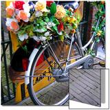 Dutch Flower-Power Bike