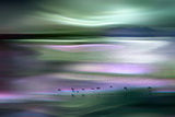 Migrations - Green Sky