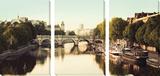 La Seine Tableau multi toiles par Irene Suchocki