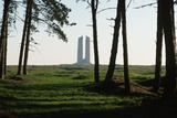 Grove of Trees at Vimy Memorial