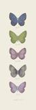 Jardin des Papillons II