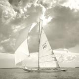 Sunlit Sails I
