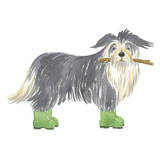 Shaggy Dog I