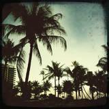 Miami Vintage I Giclée par Tony Koukos
