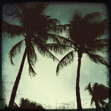Miami Vintage II Giclée par Tony Koukos