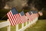 Flags I