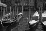 Classic Venice I