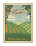 Florida  Taste the Sunshine