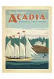Parc national d'Acadie, Maine Reproduction d'art par Anderson Design Group