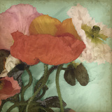 Aquatic Poppies II