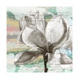 Pastel Magnolias I