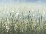 Bliss I Reproduction d'art par Tim O'toole