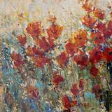 Red Poppy Field I