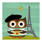 Owl in Paris