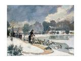 Les canards au bois de Boulogne (jardin d'acclimatation)