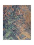 Rochers et branches à Bibémus