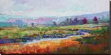 Rainbow Marsh