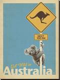 Get Wild in Australia
