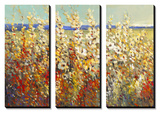 Field of Spring Flowers II Tableau multi toiles par Tim O'toole