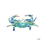 Sea Creatures I Giclée premium par Julie DeRice