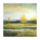 Marsh Lands I