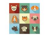 Pets Vector Icons - Cats and Dogs Elements Reproduction d'art par Marish