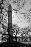 Washington Monument Black and White DC