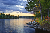 Dramatic Sunset and Pines at Lake of Two Rivers in Algonquin Park  Ontario  Canada