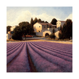 Lavender Fields I Crop