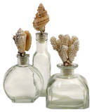 Shell Stopper Glass Bottles - Set of 3