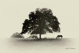Horses and Trees I