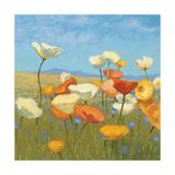 Springtime Meadow I