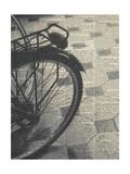 La Bicyclette III Crop