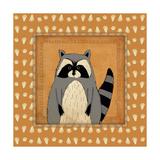 Raccoon in Frame