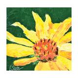 Flower Seeker