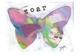 Soar Butterfly