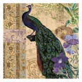 Peacock Brocade