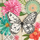 Butterfly Dream II