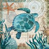 Monterey Bay III Reproduction d'art par Geoff Allen