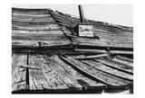 Bodi Roof