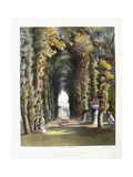 Vista' in the Gardens of Teddesley  Seat of the Right Honorable Lord Hatherton  1857