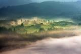On a Mountain Glade