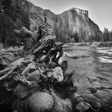 Yosemite Valley View from Bank of Merced River