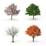 Tree at Four Seasons Papier Photo par Mike_Kiev