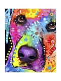 Closeup Labrador Reproduction d'art par Dean Russo