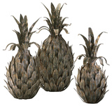 Variegated Pineapples