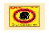 Rajani Elephant Trade