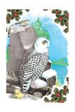 Christmas Snow Owl