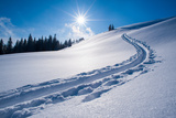 Snow Track of a Backcountry Skier in Bavarian Alps