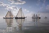 Netherlands  Race of Traditional Sailing Ships